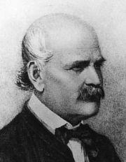 Ignaz Philipp Semmelweis Die Denkmäler Im Arkadenhof Der